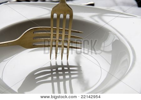 Forks and shadows