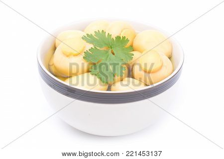 whole champignon mushrooms in brine isolated on white background