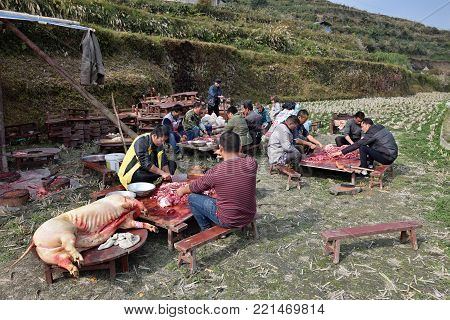 GUIZHOU PROVINCE, CHINA - CIRCA DECEMBER 2017:  A pig-slaughtering feast on the occasion of a wedding. People preparing food for wedding feast.
