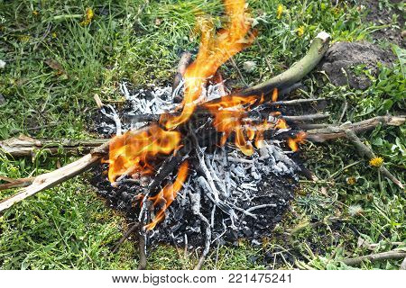 Concept: spring garden work.Old branches of fruit trees are burned at the stake in the spring fruit garden.