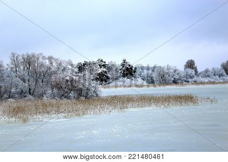 Winter forest and lake. A frozen lake, river. Northern nature.Trees in the winter. The snow on the trees. The snow on the branches. Christmas mood. Winter lake. The ice on the lake. The water was cold. The river in winter. The ice on the water. Beautiful