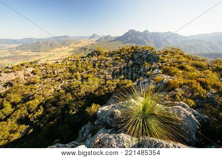 On the summit in Mt Maroon,Mount Barney National Park,QLD,Australia
