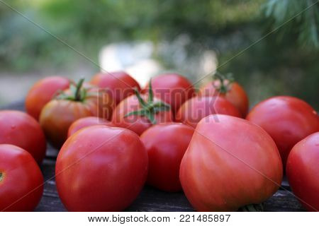 Tomato texture. Fresh big red tomatoes closeup background photo. Pile of tomatoes. Tomato pattern with studio lights big red vegetables.