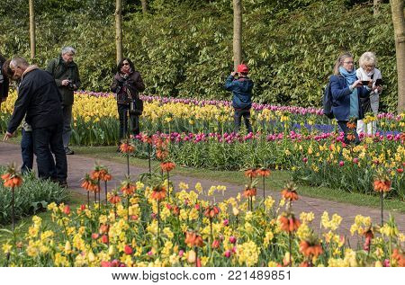 LISSE, NETHERLANDS - APRIL 19, 2017: Visitors at the Keukenhof Garden in Lisse, Holland, Netherlands.