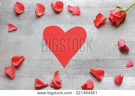 valentine greeting card with red rose, rose blossom leaves and red heart on silver colored background