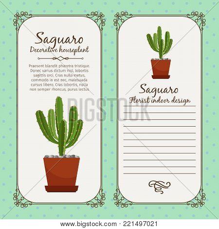 Vintage label template with decorative saguaro plant in pot, vector illustration