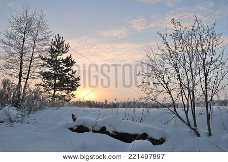 Wonderful  early cold winter dawn in Finland