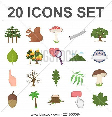 Forest and nature cartoon icons in set collection for design. Forest life vector symbol stock  illustration.