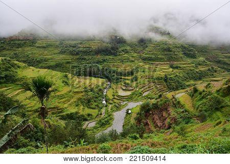 Rice Terraces - Banaue, Philippines UNESCO heritage
