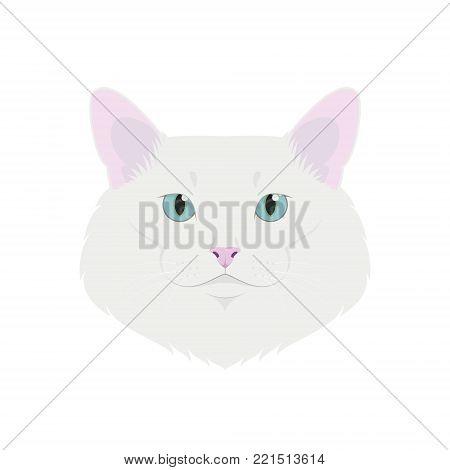 Turkish Angora cat isolated on white background vector illustration