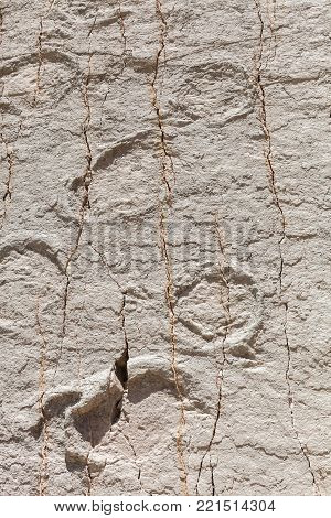 Real dinosaur footprint imprinted in the rock. Nacional Park in Sucre, Bolivia. Stock photo poster