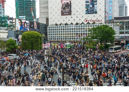 Tokyo, Japan - April 22, 2017: aerial view of unidentified pedestrians in Shibuya Crossing, one of the busiest crosswalks in the world. Shibuya is one of Tokyo's most famous neighborhoods.