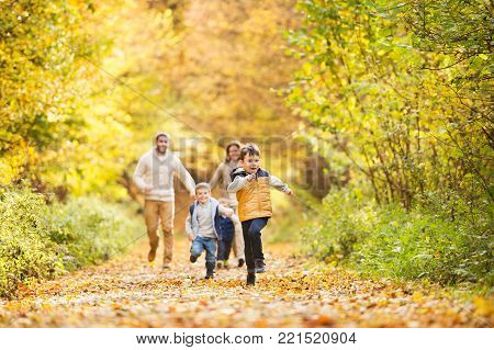 Beautiful young family on a walk in forest. Mother and father with their three sons outside in colorful autumn nature running.