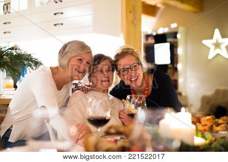 Beautiful big family sitting at the table celebrating Christmas together at home. Mother, gradmother and daughter drinking red wine.