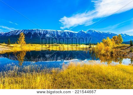 Rocky Mountains are reflected in the turquoise smooth water of Lake Abraham. Indian Summer in the Rockies. Concept of active and ecological tourism