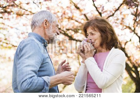 Beautiful senior couple in love outside in spring nature. Woman smelling a flower.