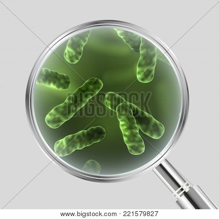 Vector realistic illustration of green bacteria cells under the magnifying glass isolated on grey background