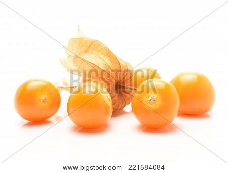 Physalis fruit otherwise known as chinese lantern