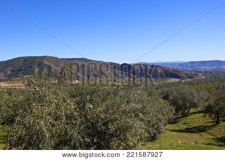 Rocky Andalusian Landscape