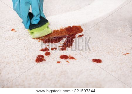 Close-up Of A Person's Hand Wearing Gloves Cleaning Stain Of Carpet With Sponge
