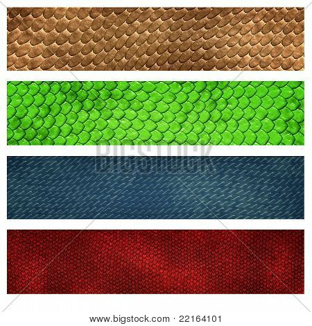 reptile skin four color banner set for background poster