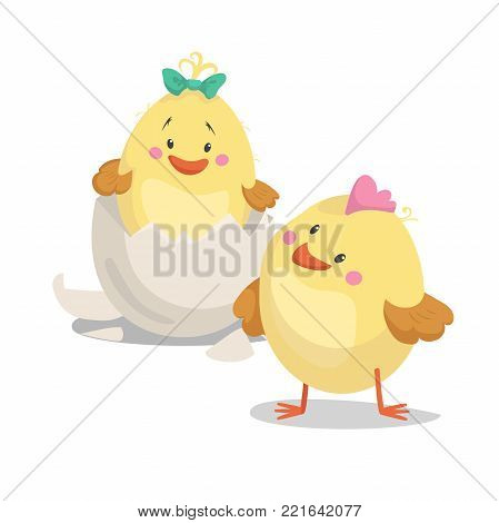 Chicken new born boy and girl chick  in hatched egg. Cartoon flat trendy design spring and new born baby vector illustration.