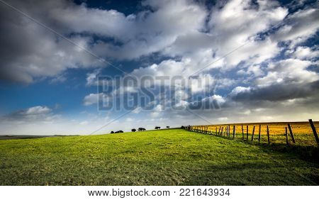 Sunlight on fields with blue sky and clouds