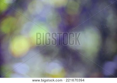 Colorful abstract background. Colorful Texture. Background texture.Abstract background. Blur image of colorful light. Blurred Lights . Blurred image. Bokeh Lights.