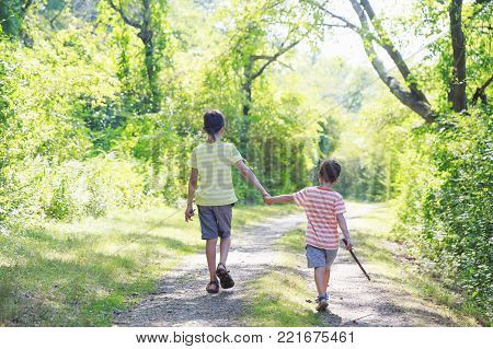 children walk on a forest road. two brothers holding hands on a walk. back view. The concept of siblings friendship