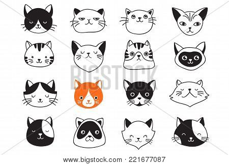 Cute cats collection, vector icons, hand drawn illustrations