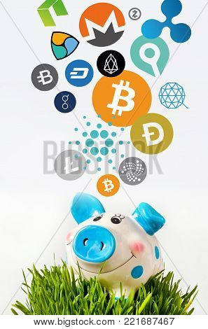 Virtual cryptocurrency - financial technology and internet money - piggy bank and coin signs