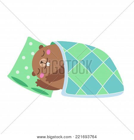 Vector illustration of groundhog sleeping under a blanket. Flat style