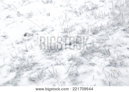Frosty texture. Winter background. Frosty background. Sweden
