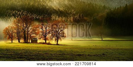 Finest autumn lansdcape of Bavarian nature with several trees and magestic light and fog. Scenic panoramic view of field, forest and small wooden house in fall. Bavaria, Germany (Deutschland)