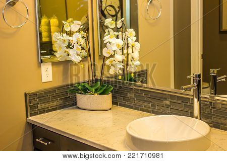 Modern Bathroom Counter With Vase And Flowers