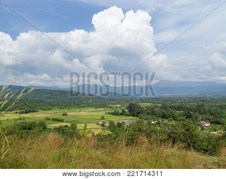 Fields in Nakhon Nayok Province of Thailand
