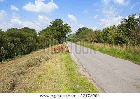 Roadside Haymaking