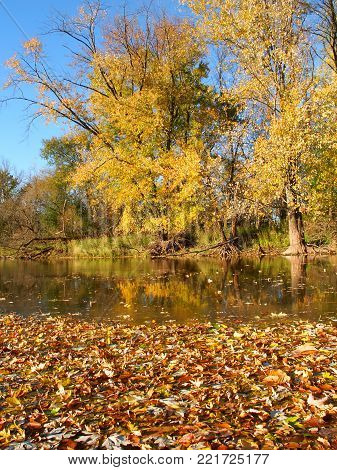 Beautiful fall colors reflect off the Kishwaukee River in Boone County Illinois