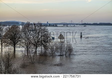 The river Rhine is flooding the Muehlenweide of the city of Duisburg, Germany
