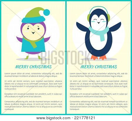 Merry Christmas, poster representing penguin with scarf and headphones and purple bird wearing sweater and knitted green hat on vector illustration