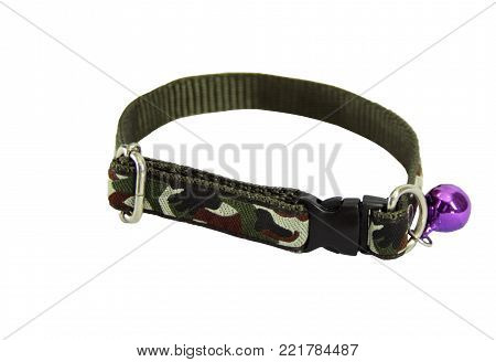 Pet supplies about collars for dog or cat isolated on white background.