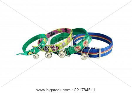 Pet supplies about collars for dog or cat on white background.