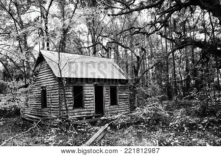 Creepy Abandoned House Deep in the Woods