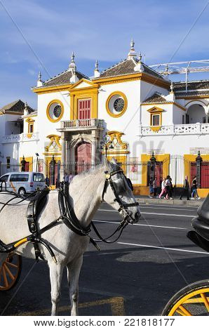 SEVILLE,SPAIN- APRIL 4, 2015 :Plaza de los Toros in Seville is one of the oldest and most important bullrings in the world. It dates from 1752-1881and accommodates 14,000 spectators.