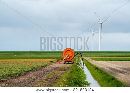 Large view on the irrigation machine on the tulip field