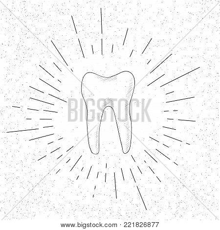 Hand Drawn Symbol of Premolar Tooth - Doodle Vector Hatch Icon