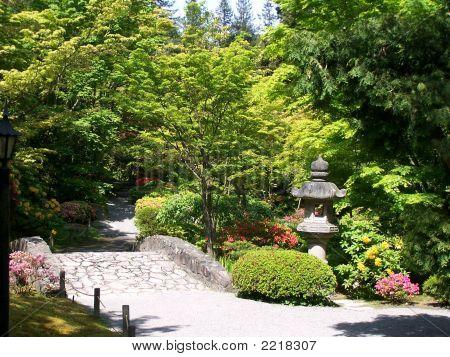 Japanese Garden And Stone Bridge