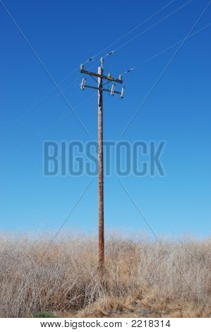 Powerlines 13