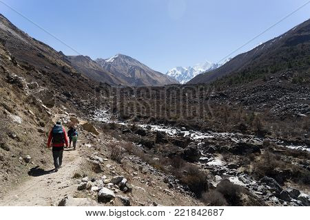 Langtand Valley Trekking Mountain In Nepal