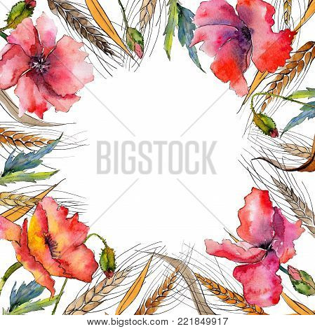 Wildflower spica flower frame in a watercolor style. Full name of the plant: ear, spike, spica. Aquarelle wild flower for background, texture, wrapper pattern, frame or border.
